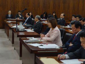 沖縄北方問題特別委員会