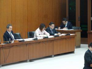 2014年2月19日文部科学委員会