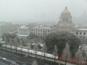 2014年2月14日雪景色
