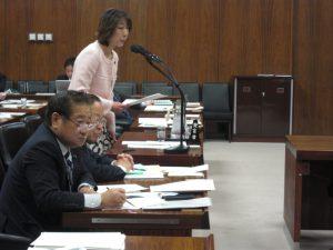 沖縄北方問題特別委員会で質問