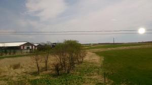 広大な大地。畜産農家が多く、大きな牛の姿が車窓から見えました。