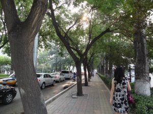 東京よりは涼しい北京の街並み
