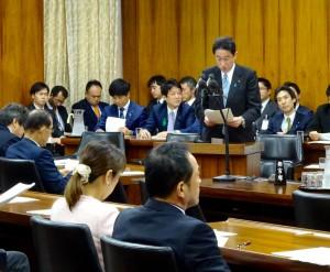 岸田外務大臣の所信