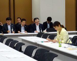 東京オリパラ公共事業再検討本部会合