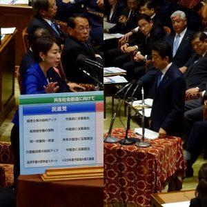 衆議院予算委員会。山尾政調会長の質疑。