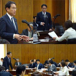 答弁する岸田外務大臣。