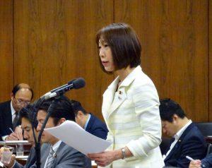拉致問題等特別委員会で質疑に立ちました。