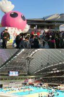 東京体育館の春高バレー大会、偶然見つけて観戦しました。新潟県からも参加しており、熱戦にエールを送りました。