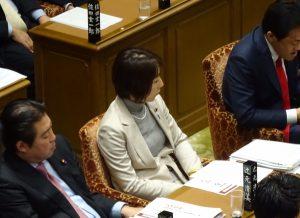 17日(金)予算委員会。
