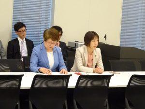 内閣部門会議。政治分野における男女共同参画推進法案について議論。