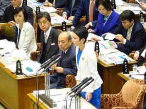 参議院予算委員会。蓮舫代表の質疑。