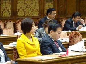 文部科学委員会。通常は予算委員会でしか使われない第一委員室で開会。